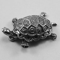 AF251 - Small Raised Turtle